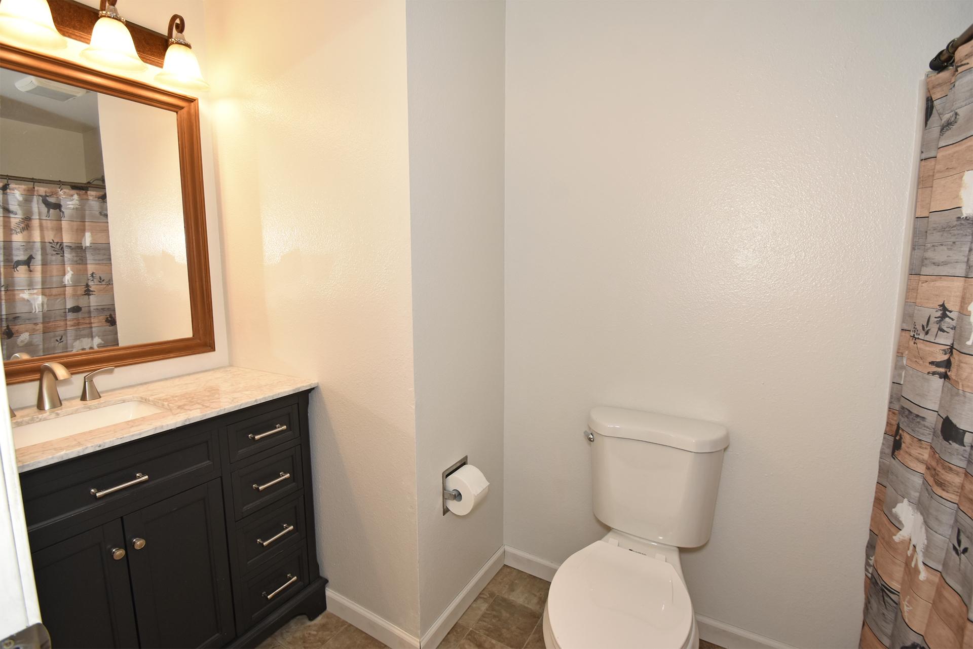 Full Bath - 11618 211th Ave E